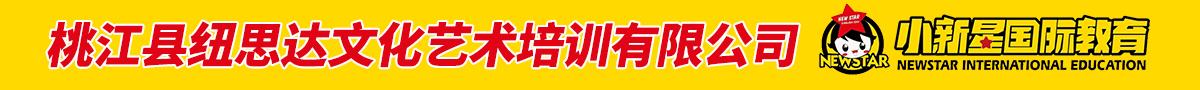 桃江县纽思达文化艺术培训有限公司