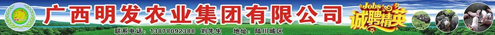 广西明发农业集团有限公司
