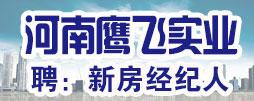 河南省鹰飞实业有限公司