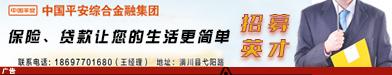 中国平安综合金融集团平安普惠