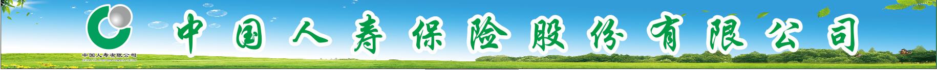 中國人壽保險股份有限公司惠水支公司