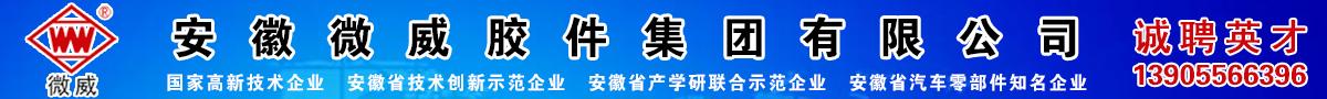 安徽微威膠件集團有限公司