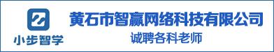黄石市智赢网络科技有限公司
