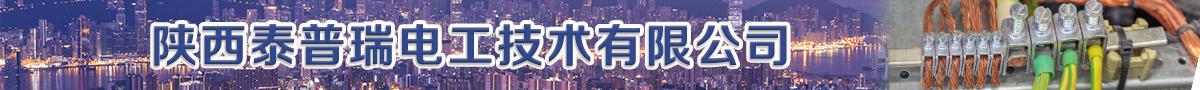 陕西泰普瑞电工技术有限公司