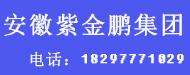 安徽紫金鵬印務有限公司