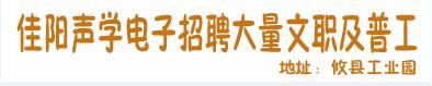 湖南省佳陽聲學電子科技有限公司