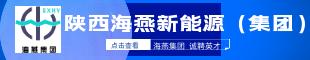 陕西海燕新能源(集团)有限公司