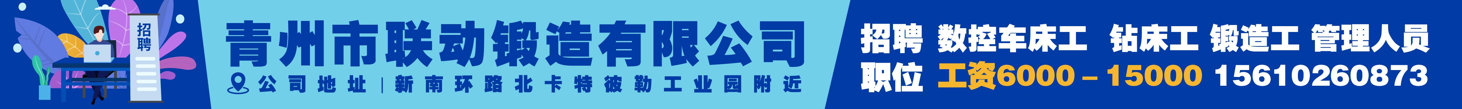 青州市聯動鍛造有限公司