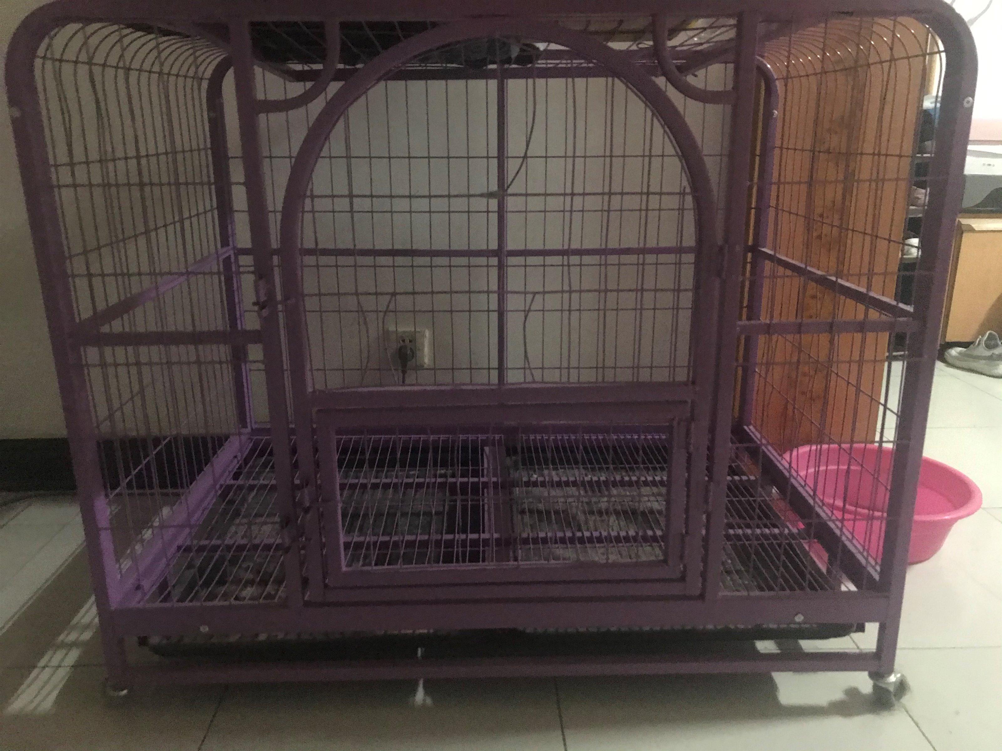 出售大型狗笼原价550低价250出售
